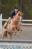 PALMETTO MEDAL AND DERBY FINALS HORSE SHOW CAMDEN 2012 : 146 galleries with 2908 photos