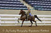 WCAHA SHOW PROOFS SUNDAY April 1, 2012 : 27 galleries with 479 photos